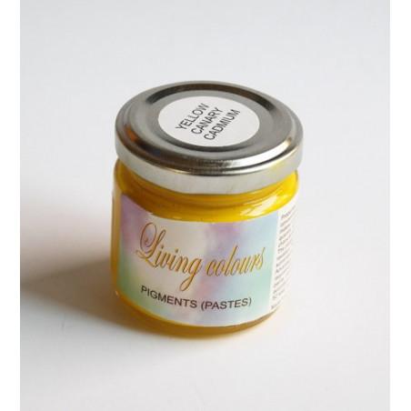 pigment w paście-żółcień kadmowa kanarkowa